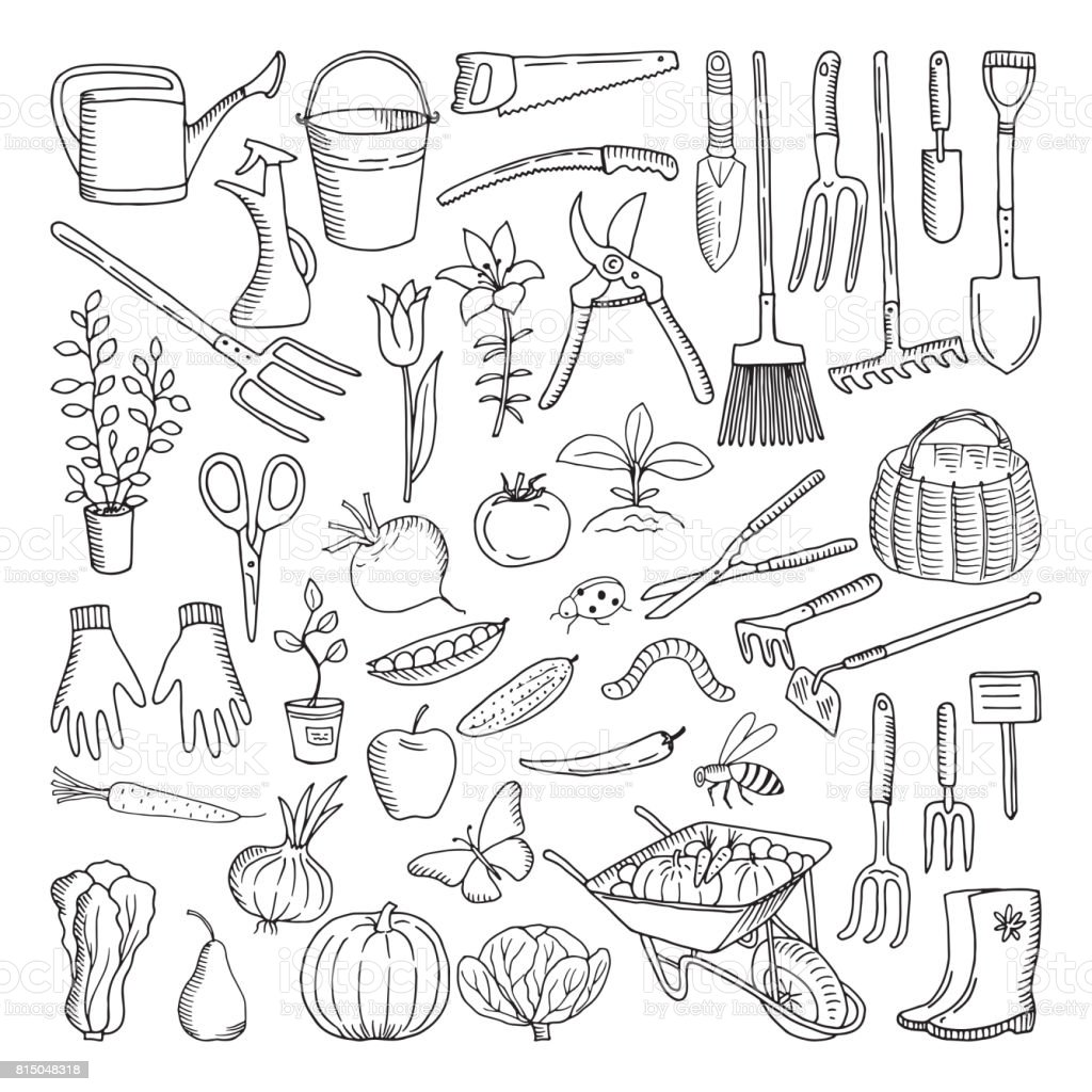 Hand drawn tools for farming and gardening. Doodle of nature environment vector art illustration