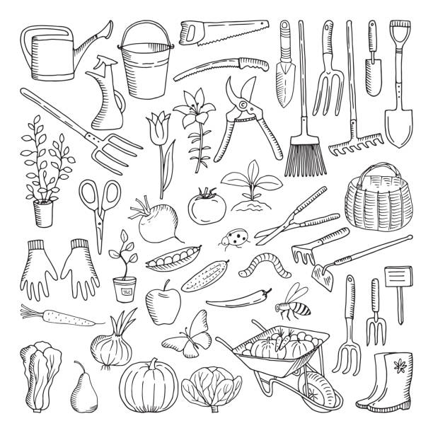 Hand drawn tools for farming and gardening. Doodle of nature environment Hand drawn tools for farming and gardening. Doodle of nature environment. Agriculture and farm equipments wheelbarrow and secateurs, farming tools illustration gardening equipment stock illustrations