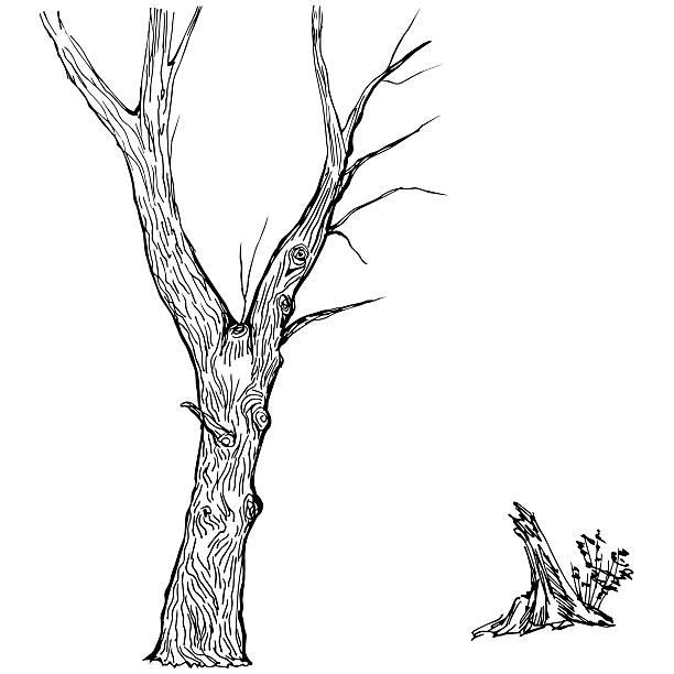 рисунок дерева интерпретация фото первую очередь