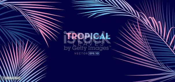 Vector illustration of a set of Hand drawn Tropical Leaves background. EPS 10