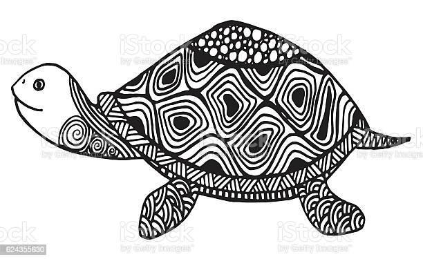 Hand drawn turtle doodle illustration vector id624355630?b=1&k=6&m=624355630&s=612x612&h=baq8x7pl0596qybjbspse j0r6h280vzufu4tfyrndu=