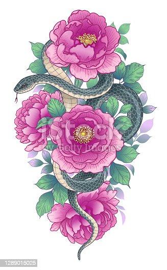 Hand drawn twisted Snake among pink peonies