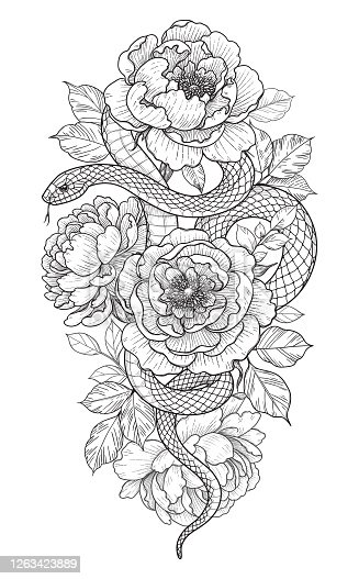 Hand drawn twisted Snake and peonies