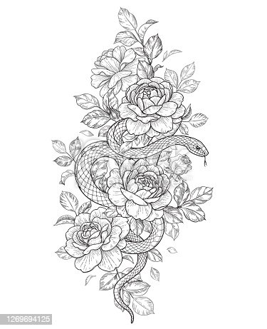 Hand drawn twisted Snake and roses