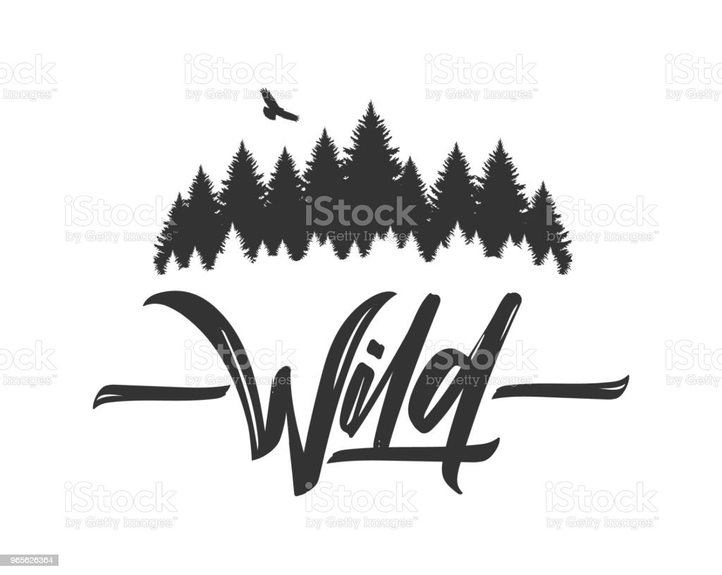 Hand drawn type lettering of Wild with silhouette of Pine Forest and Hawk. Brush calligraphy. Typography design. royalty-free hand drawn type lettering of wild with silhouette of pine forest and hawk brush calligraphy typography design stock illustration - download image now
