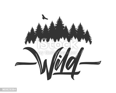 Vector illustration: Hand drawn type lettering of Wild with silhouette of Pine Forest and Hawk. Brush calligraphy. Typography design.