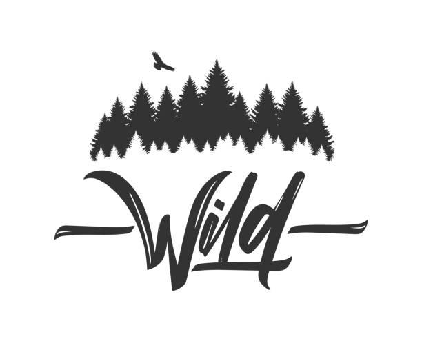 bildbanksillustrationer, clip art samt tecknat material och ikoner med hand dras typ bokstäver av vilda med silhuetten av tallskog och hawk. borsta kalligrafi. typografi design. - forest
