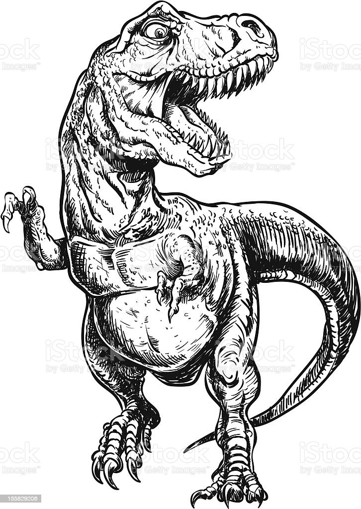hand drawn tyrannosaurus dinosaur vector illustration stock vector