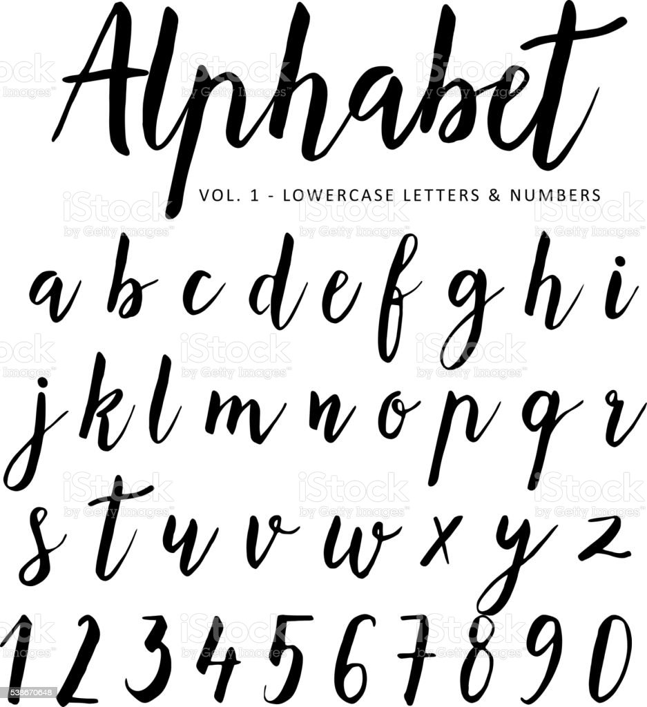 Hand drawn vector alphabet script font brush isolated