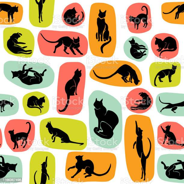 Hand drawn vector cat silhouette pattern vector id1166367498?b=1&k=6&m=1166367498&s=612x612&h=ydrpms8yug n6wchjx59spw7z8hthfufv2yfo wfdgu=