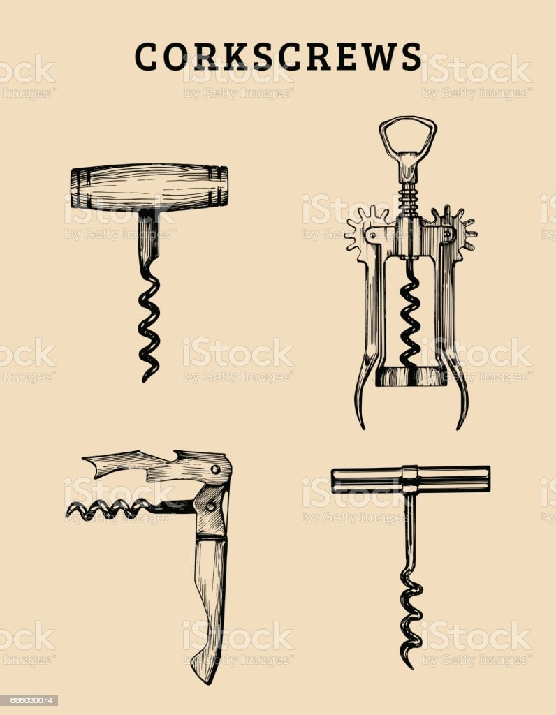 Hand drawn vector corkscrews set. Retro illustrations collection of different spins in sketch style. vector art illustration