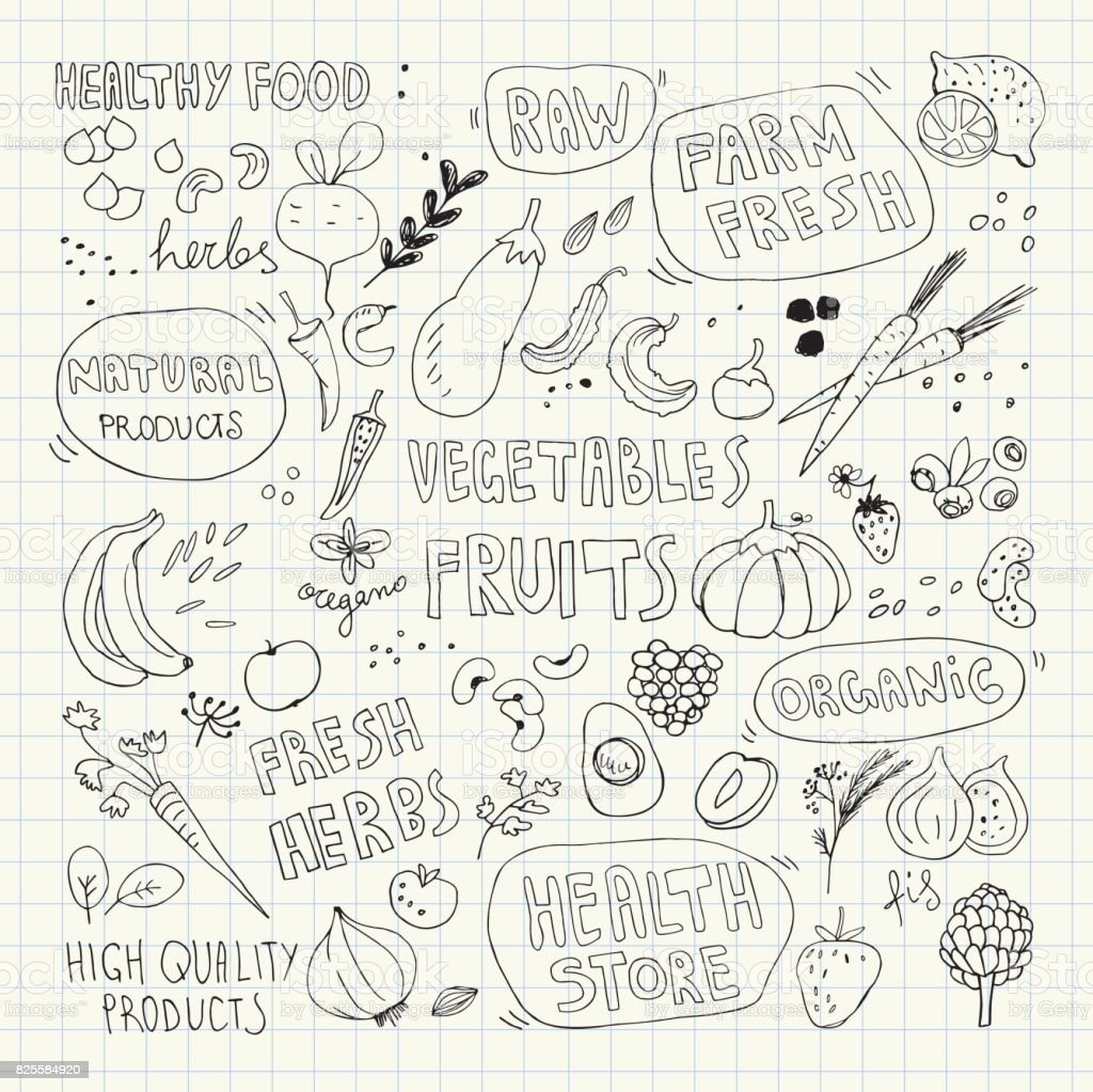 Hand drawn vector doodles fruits and vegetables pencil drawing illustration