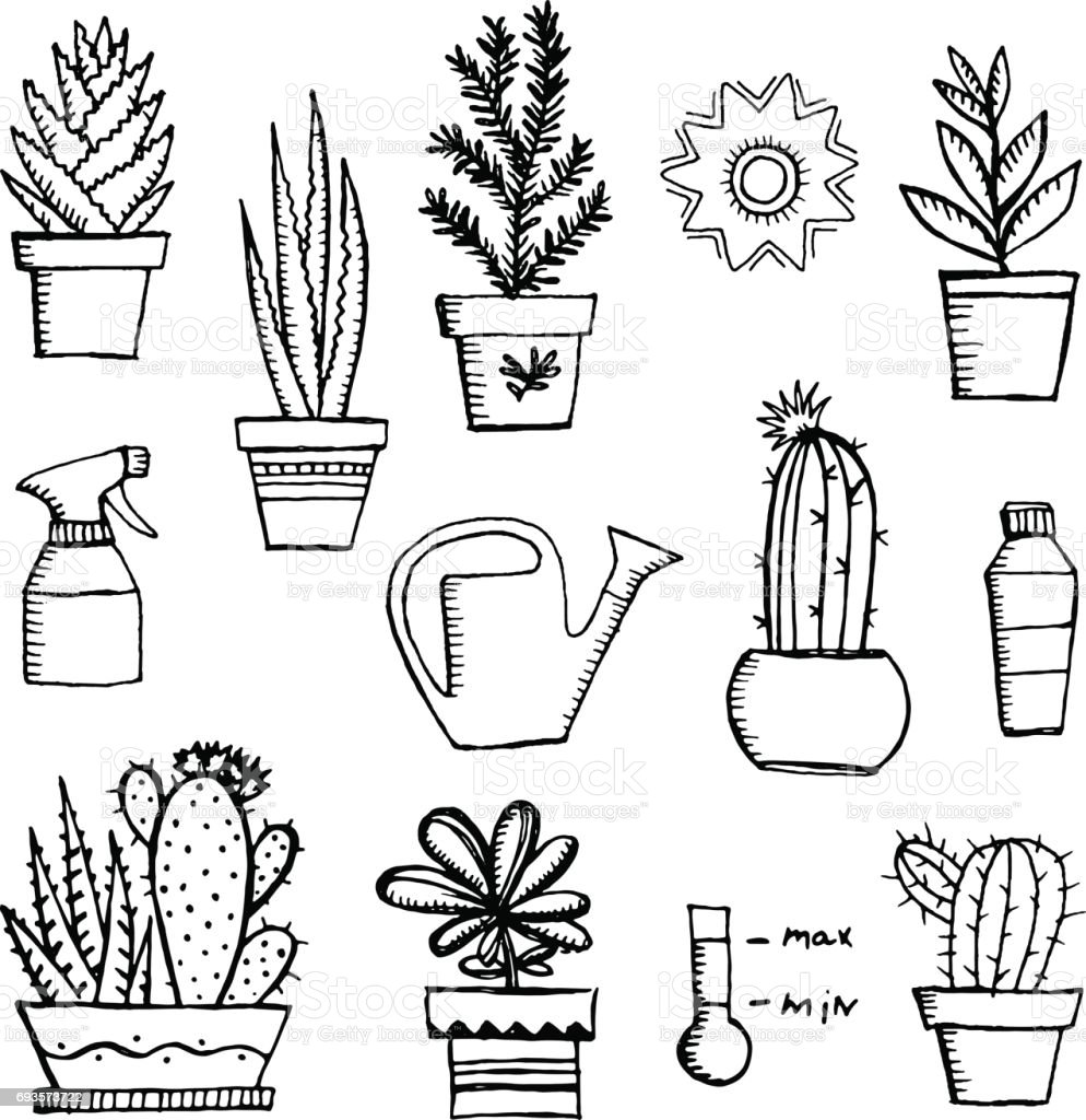 Hand Drawn Vector Garden Icon Set Vintage Sketch Of Gardening Tools And