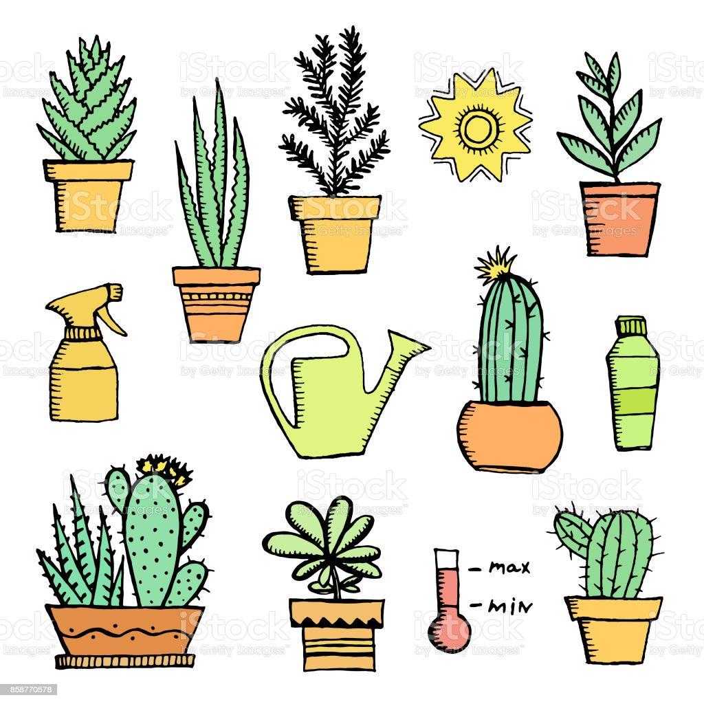 Hand Drawn Vector Garden Plant Icon Set Vintage Sketch Of Gardening Tools