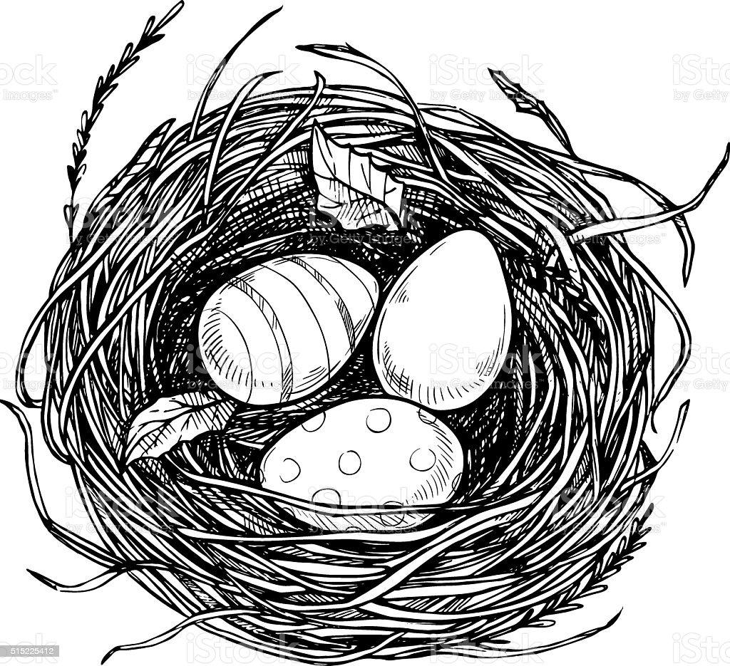 Hand drawn vector illustration - nest with Easter eggs. vector art illustration