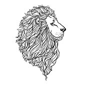 Hand drawn vector illustration of doodle lion. sketch. Vector eps 8