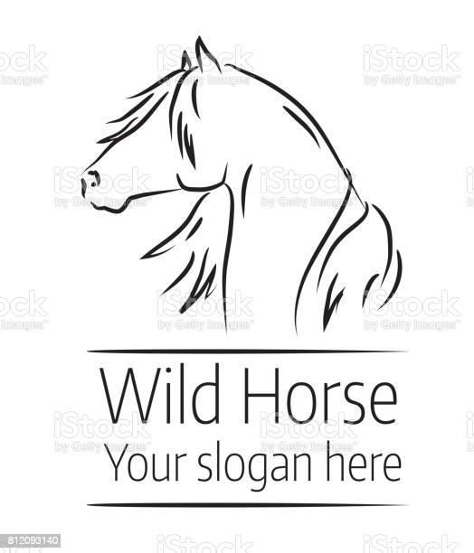 Hand drawn vector illustration of wild horse head vector id812093140?b=1&k=6&m=812093140&s=612x612&h=06gepn7cx0zekky t3iv ztdbdtkmbzwscgzlwxefxa=