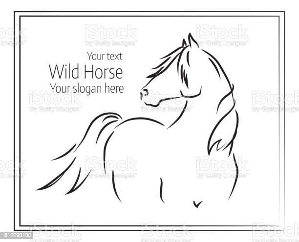 Hand drawn vector illustration of wild horse vector id812093130?b=1&k=6&m=812093130&s=612x612&h=bg1yjoljjofpgjjcghor1hvtrrvjvst6 xzb95wn39w=