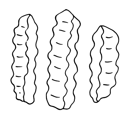 Hand drawn vector illustration of wrinkles cut French fries pattern pattern. set of French fries with a black line isolated on a white background