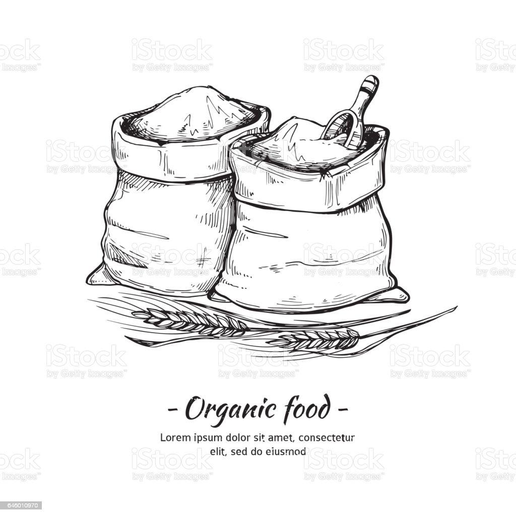 Hand drawn vector illustration - Organic food. Sacks of flour and grain. Sketch of wheat. vector art illustration