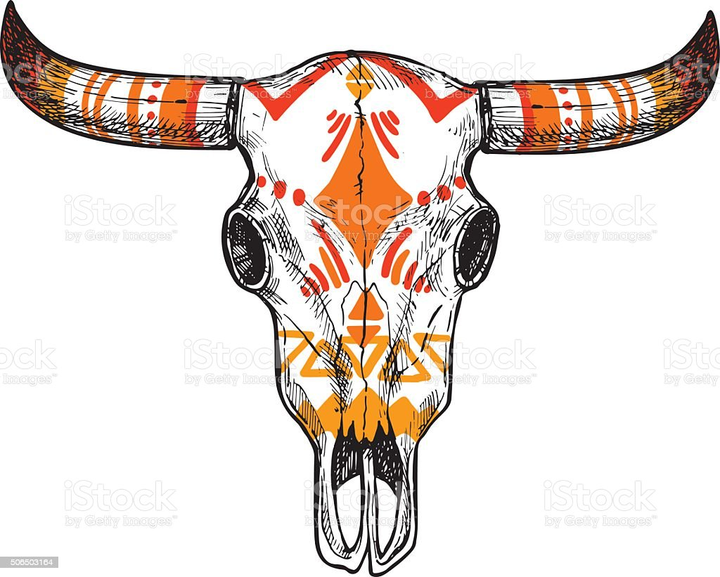 Hand drawn vector illustration - skull of animal. Vintage vector art illustration