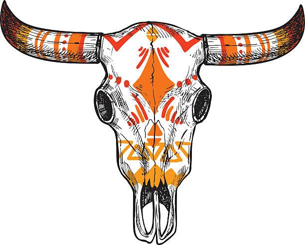 hand drawn vector illustration - skull of animal. vintage - animal skull stock illustrations