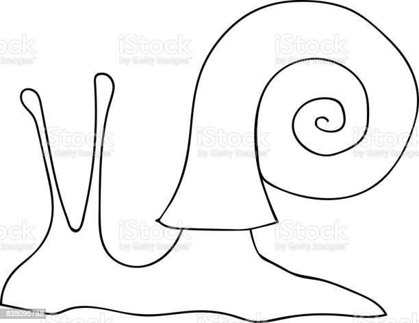 handgezeichnete vektor illustration spirale schneckenhaus