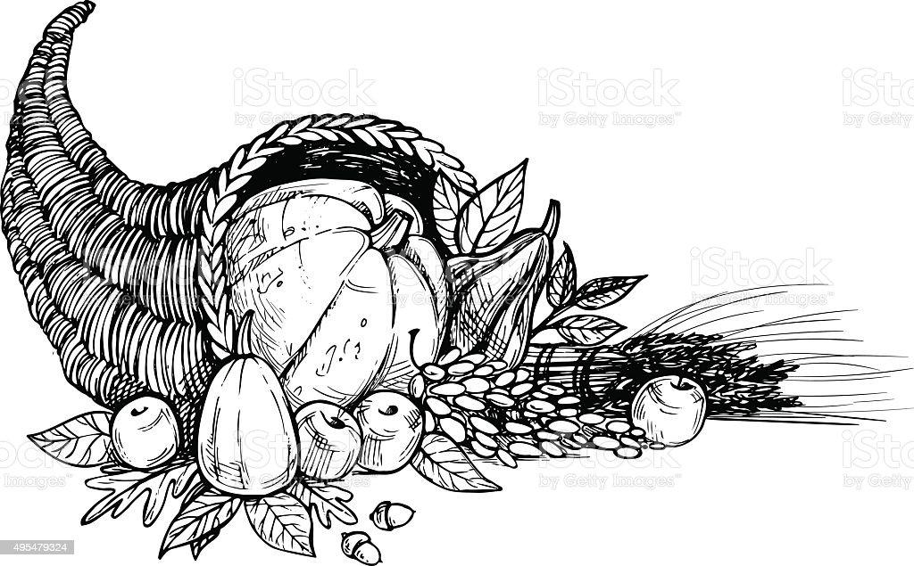 Hand Drawn Vector Illustration Thanksgiving Day Cornucopia ...