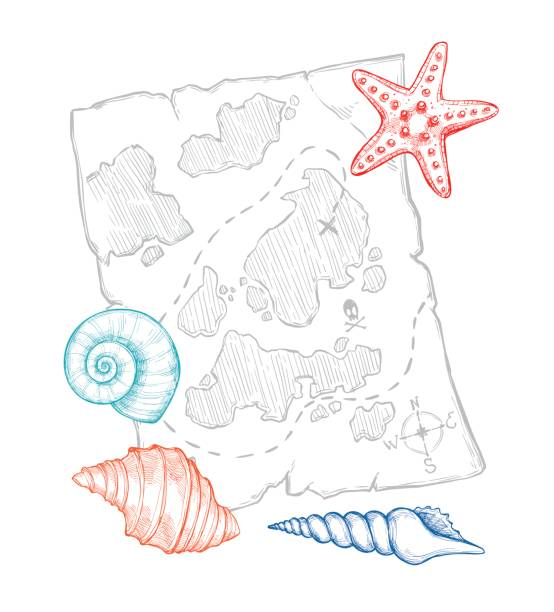 ilustrações, clipart, desenhos animados e ícones de hand drawn vector illustration - treasure map with sea shells and starfish. design elements in sketch style. perfect for invitations, greeting cards, posters, prints, banners, flyers etc - planos de fundo de mapa do tesouro