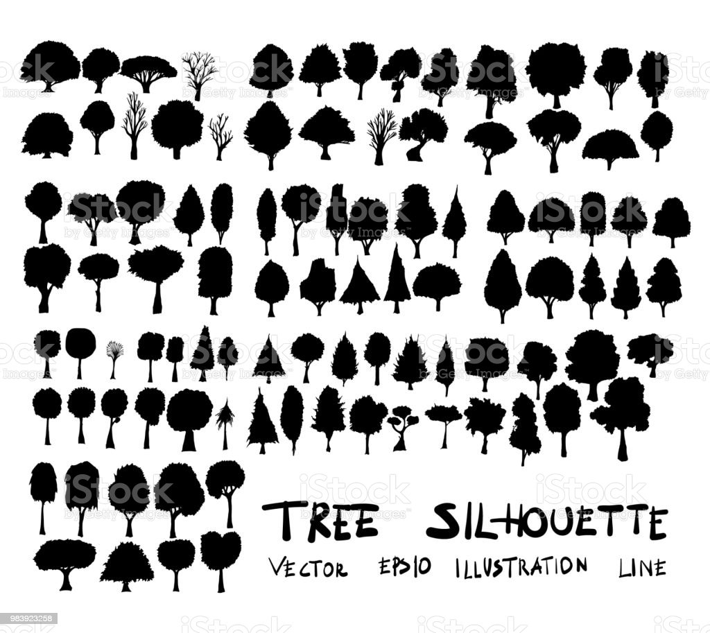 Hand drawn vector illustration tree silhouette drawing set eps10 vector art illustration
