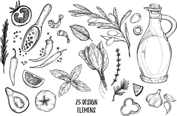 Hand drawn vector illustrations - Ingredients of pizza. Olive oil, olives, shrimps, tomato, basil, rosemary, pepper etc. Perfect for menu, cards, blogs, banners. Illustration in sketch style vector art illustration