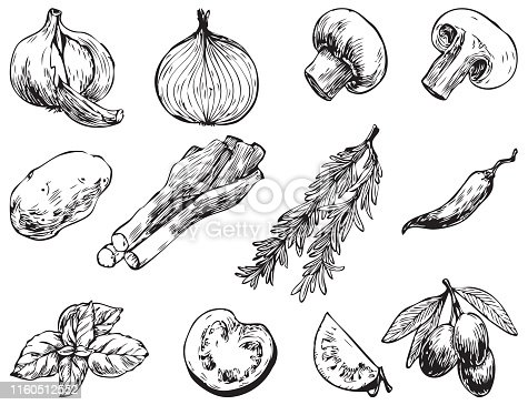 Hand drawn vector illustrations.Ingredients for cooking: olives, hot peppers, tomato, onion, garlic, champignon, leek, potatoes. Perfect for menu, cards, blogs, banners. Illustration in sketch style