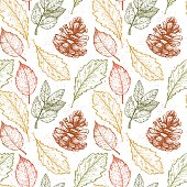 Hand drawn vector illustrations. Seamless pattern with  pine cones