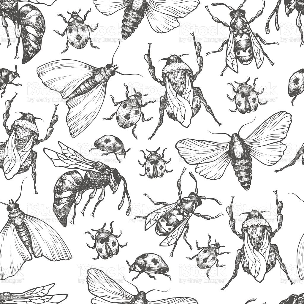 Hand drawn vector pattern with insects in different poses. vector art illustration