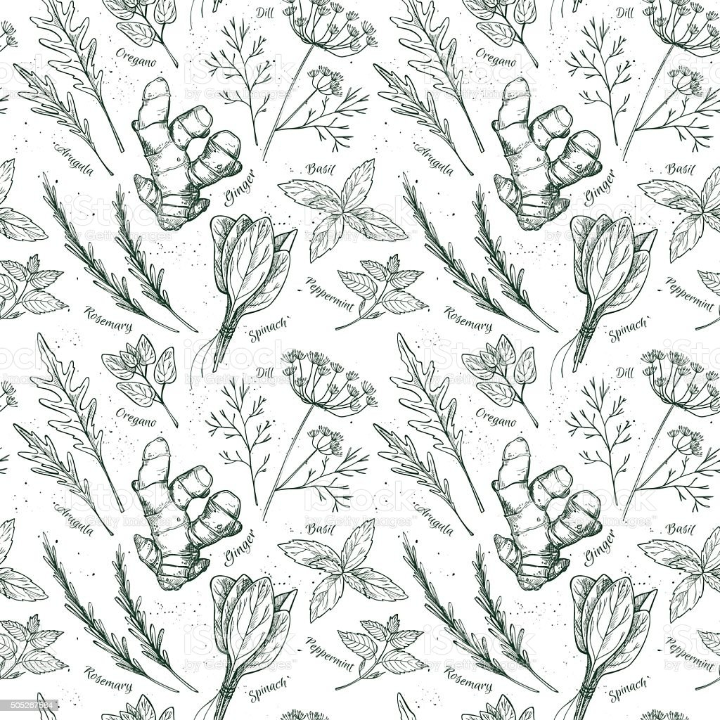 Hand drawn vector. Seamless pattern with herbs and spices. vector art illustration