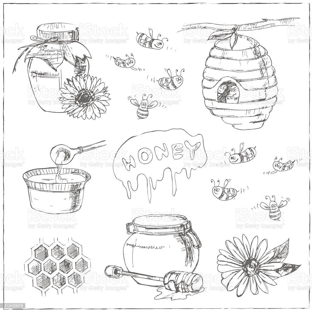 Hand drawn vector set with honey elements. vector art illustration