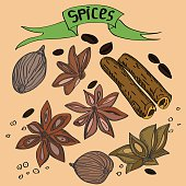 Hand drawn vector color sketch set of different spices, such as cardamom, anise, cinnamon, coffee beans, pepper on a beige background. Square format.