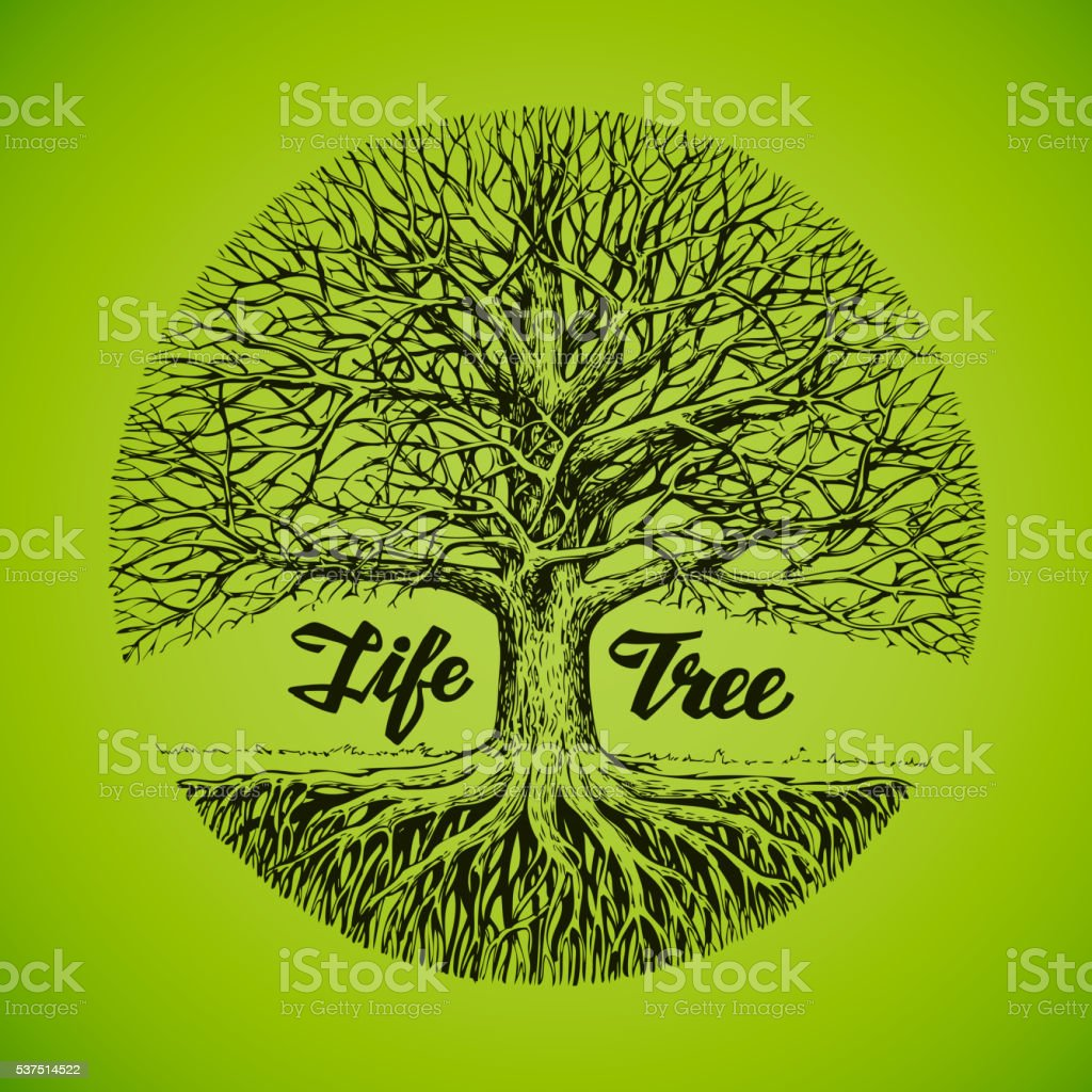 Hand drawn vector sketch tree with roots. Ecology, environment. Nature vector art illustration
