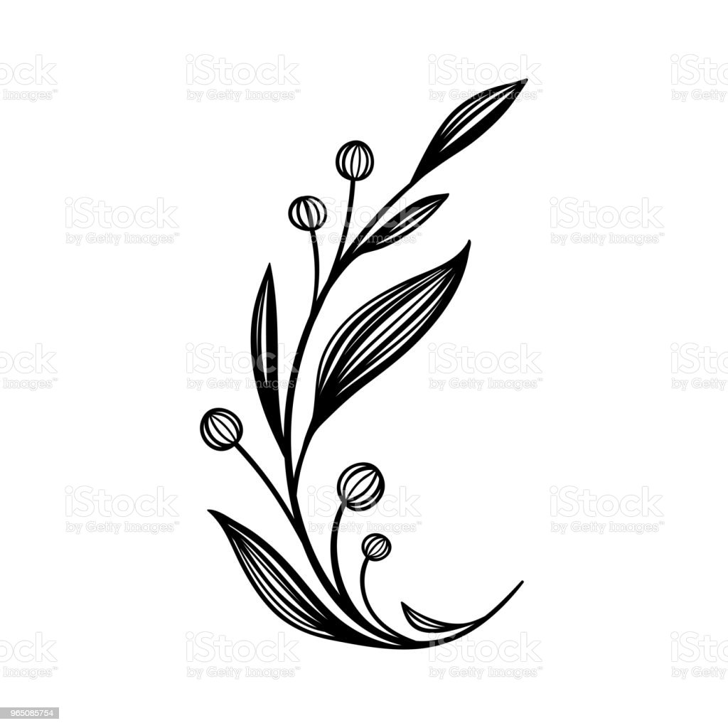 Hand drawn vector vintage element for invitations, greeting cards, quotes, blogs, wedding frames, posters royalty-free hand drawn vector vintage element for invitations greeting cards quotes blogs wedding frames posters stock vector art & more images of belarus