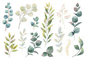 Hand drawn vector watercolor set green herbs, wildflowers and spices. Floral background for design of natural food, kitchen, market, textiles, decorations. Beautiful rustic card on white backdrop.