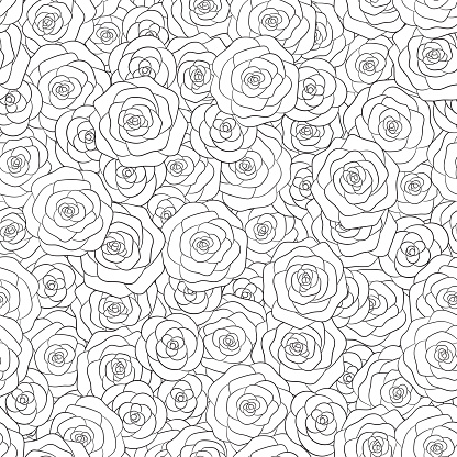 Hand drawn vector white roses seamless pattern. Floral ornament for adult and kids coloring books.