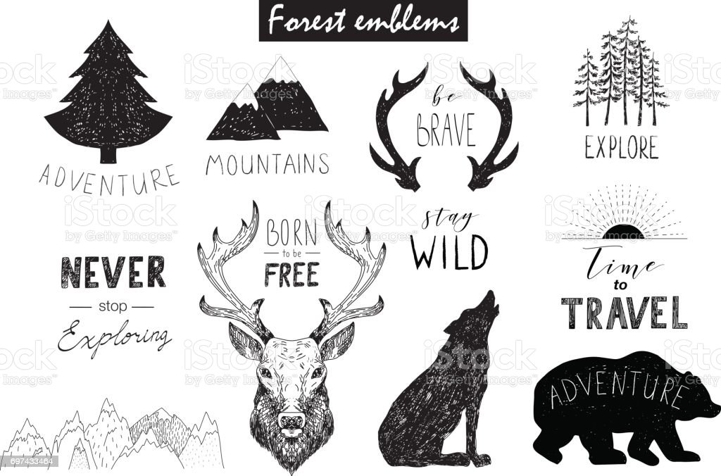 Hand drawn vector wild design elements. Forest silhouettes. vector art illustration