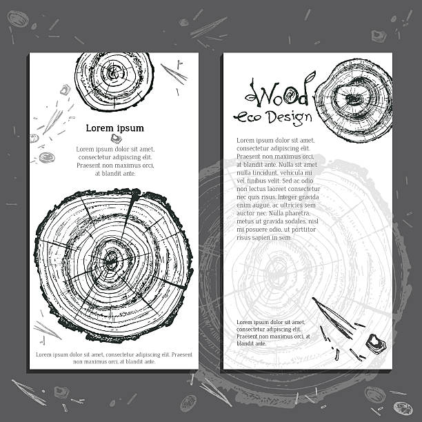 Hand drawn vector wooden slice. Pine tree. Organic modern ecolog - Illustration vectorielle