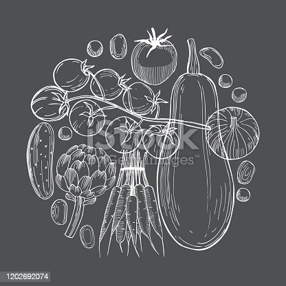 Hand drawn vegetables in a circle  on dark  background.   Vector sketch  illustration.