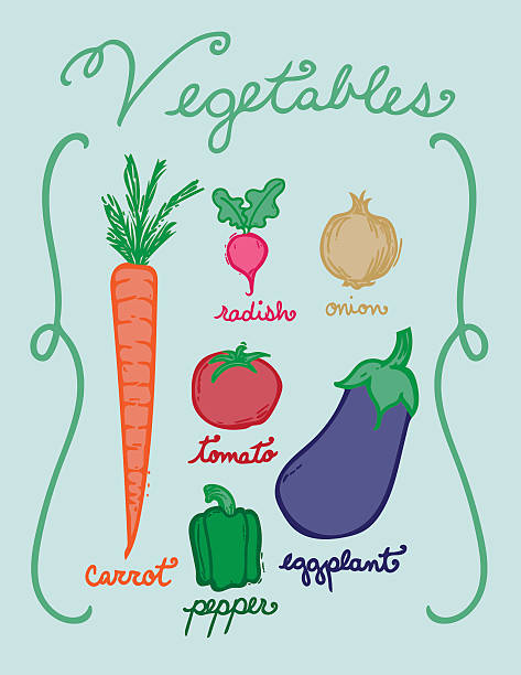 Hand Drawn Vegetables in Color vector art illustration
