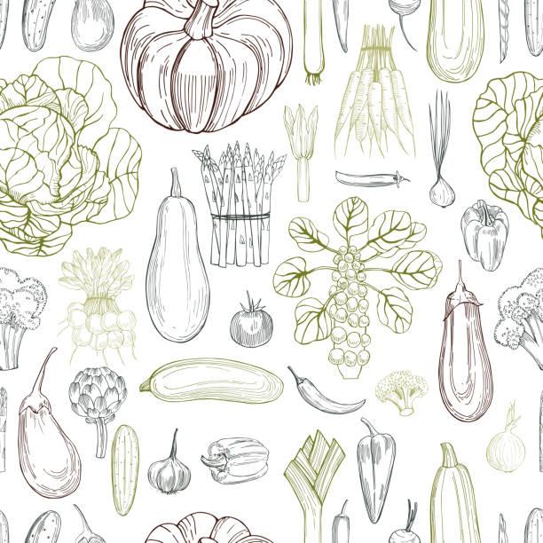 Hand drawn vegetables on white background.  Vector seamless pattern Hand drawn vegetables on white background.  Vector seamless pattern crucifers stock illustrations