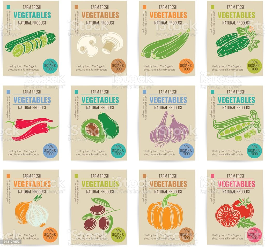 Hand drawn vegetables posters set. vector art illustration