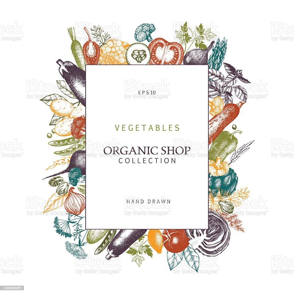 Hand Drawn Vegetables Sketch Healthy Food Frame Stock ...