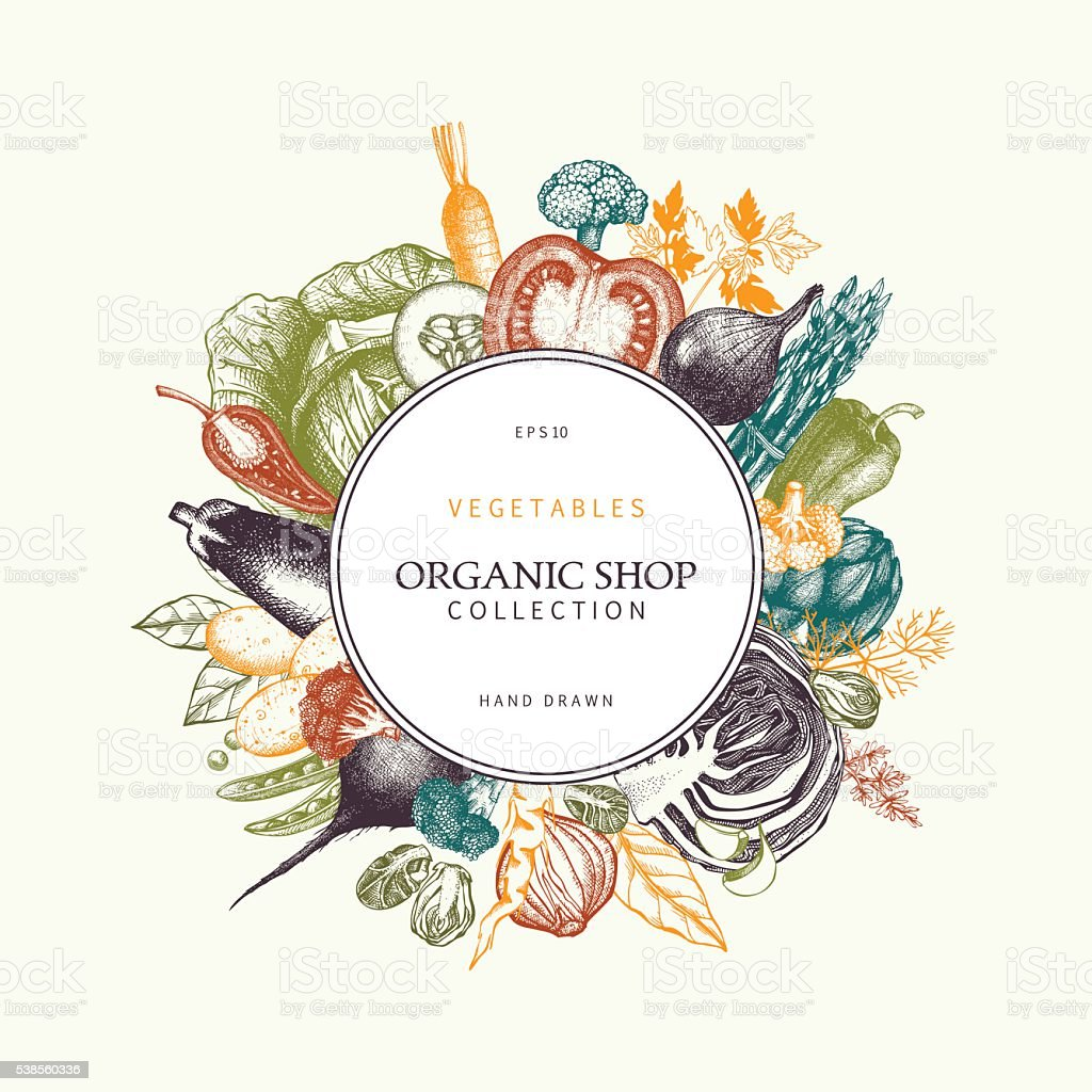 Hand drawn vegetables sketch. Healthy Food frame. vector art illustration