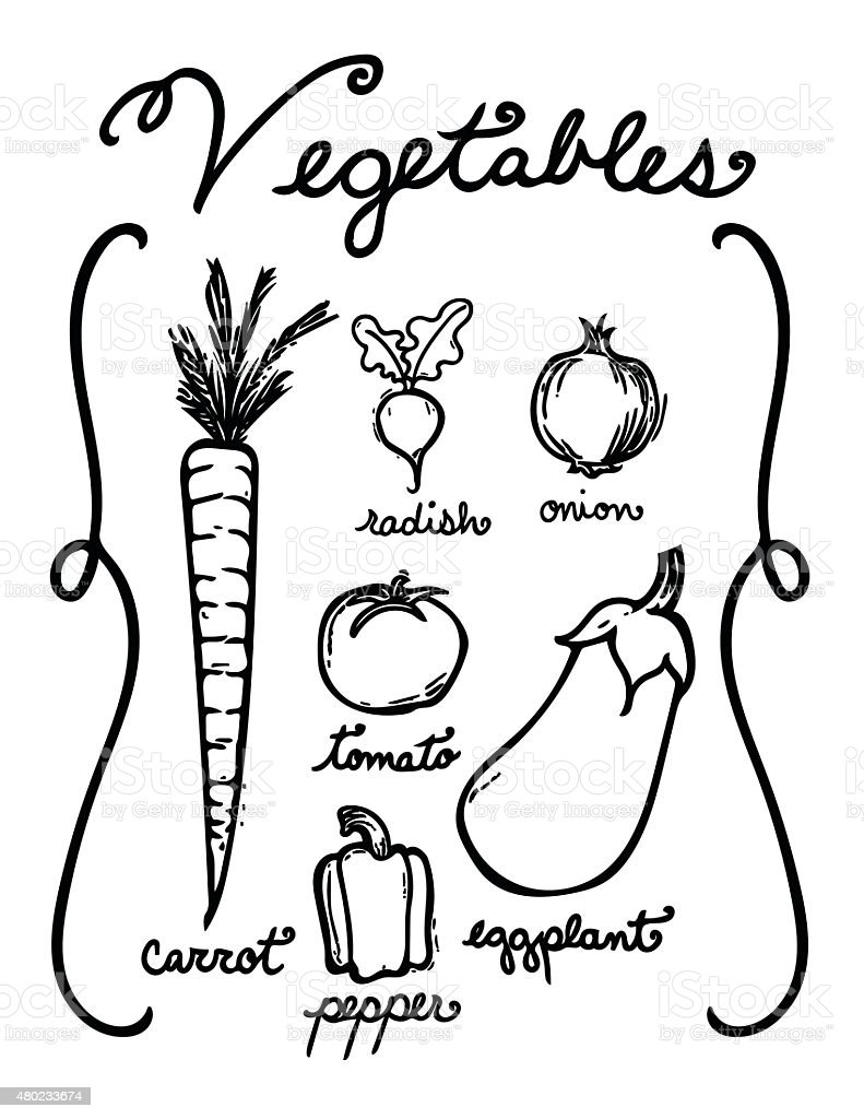 Hand Drawn Vegetables royalty-free hand drawn vegetables stock vector art & more images of 2015